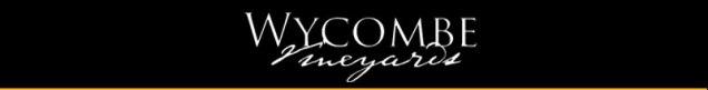 Wycombe_logo